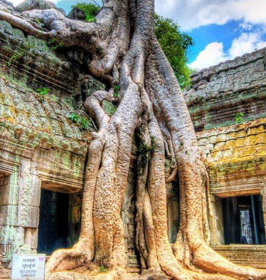 Tour-myanmar