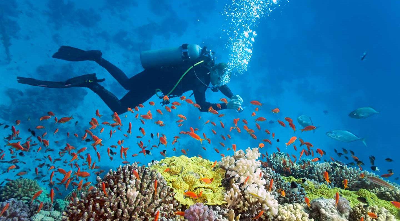 phu quoc scuba diving