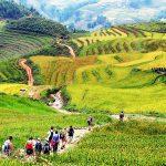 sapa trekking tours